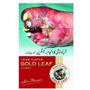 Gold-Leaf-20Hl-01